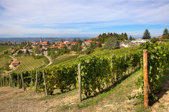 Vineyards on the hills and small town in Italy. Royalty Free Stock Photography