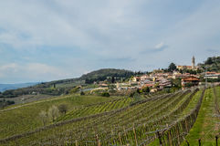 Vineyards on the hills of the Soave area near Verona in northern Italy Stock Photos