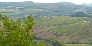 Fields in Tuscany. Vineyards and hills in a Tuscan landscape royalty free stock photography