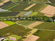 Vineyards in Italy. Aerial view of vineyards in the wine growing region of the Sarca Valley. Arco, Trentino, Italy royalty free stock photo