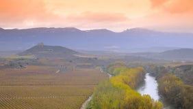 Vineyards in La Rioja, Spain. Royalty Free Stock Photo