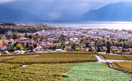 Vineyards by lake Leman. Just outside Geneva in Switzerland on a cloudy day Stock Photo