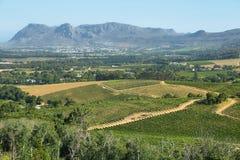 Vineyards landscape in Constantia valley Stock Photo