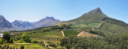 Vineyards landscape from Delaire Graff state. South Africa stock photos