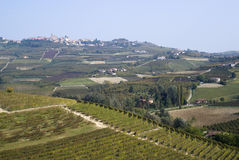 The vineyards landscape of the Langhe hills Royalty Free Stock Images