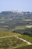 The vineyards landscape of the Langhe hills Stock Images