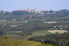 The vineyards landscape of the Langhe hills Royalty Free Stock Image
