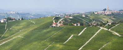 The vineyards landscape of the Langhe hills Royalty Free Stock Photos