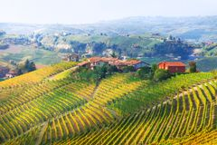 Vineyards landscape - pictorial little villages of Piemonte, Italy. Impressive Autumn landscape in Piemonte,view with vineyards,Italy stock photos