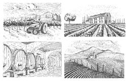 Vineyards landscape, tuscany fields, old looking scratchboard or tattoo style for menus and signage in the bar. engraved Royalty Free Stock Photos