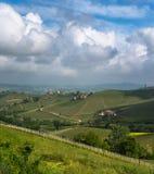 Vineyards of Langhe, Piedmont, UNESCO world heritage Royalty Free Stock Photography