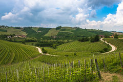 Vineyards of Langhe, Piedmont, UNESCO world heritage Stock Photography