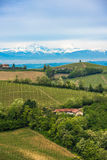 Vineyards of Langhe, Piedmont, UNESCO world heritage Royalty Free Stock Photography