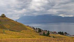 Autumn in Lavaux region 6 stock images
