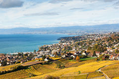 Vineyards in Lavaux - Terrasse de Lavaux, Switzerl Royalty Free Stock Image