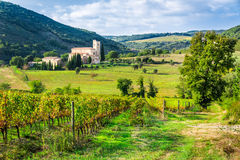 Vineyards and the monastery in Tuscany Stock Photography