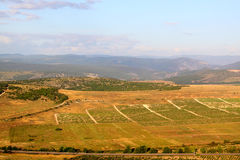 Vineyards and mountains. Crimea, Sevastopol Stock Photos