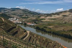 Vineyards near Duoro river in Pinhao, Portugal stock photo