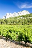 Vineyards near Gigondas at Col Du Cayron, Provence, France. Outdoor, outdoors, outside, exterior, exteriors, europe, western, provence-alpes-cote, dazur royalty free stock photo