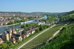Vineyards near the Marienberg castle in Wuerzburg at the river M. Ain on a sunny day and blue sky Stock Images