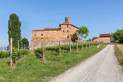 Vineyards and old castle in Italy. Stock Photo