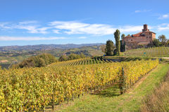 Vineyards and old castle. Piedmont, Italy. Stock Photography