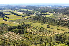Vineyards and olive groves around french Château des Baux Stock Image