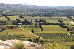 Vineyards and olive groves seen from Château des Baux Stock Photos