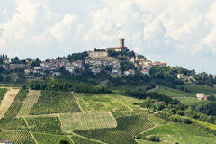 Vineyards in Oltrepo Pavese (Italy) royalty free stock photo
