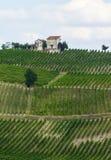 Vineyards in Oltrepo Pavese (Italy) Stock Photo