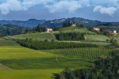 Vineyards On The Pianezzo Hillside Located In The Municipality Of Dogliani Piedmont Italy Royalty Free Stock Images