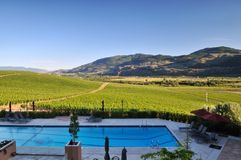 Vineyards and Orchards in Osoyoos Stock Images