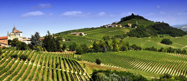 Vineyards in Piedmont. Panoramic view of green vineyards in Piedmont, Asti region, Italy Royalty Free Stock Images