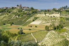Vineyards in Piedmont. Panorama of hills covered by vineyards in Piedmont, near Asti, Italy royalty free stock photo