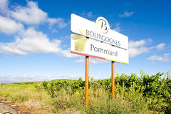 Vineyards of Pommard Stock Image