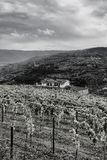 Travel in River Douro region Stock Photos