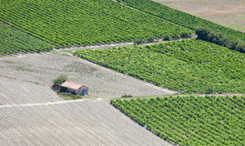 Vineyards rows, rural hut. Provence, France. Vineyards rows and rural hut from an aerial view. Countryside landscape in Luberon, Provence, France Royalty Free Stock Images
