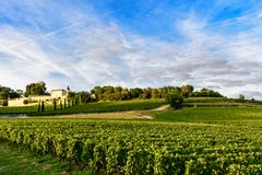 Vineyards of Saint Emilion, Bordeaux Wineyards in France. In a sunny day stock image