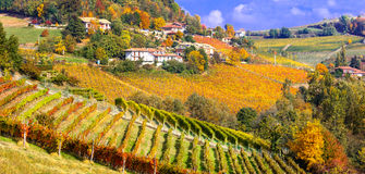 Vineyards and scenic countryside of Piemonte,Italy Stock Image