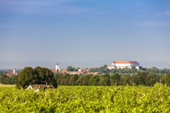 Vineyards and Siklos castle, Hungary. Ancient, architecture, building, city, cityscape, europe, famous, historic, historical, history, landscape, medieval, old stock photos