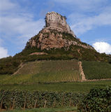 The vineyards of Solutre-Pouilly Stock Photography