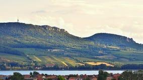 Vineyards at sunset in autumn harvest. Ripe grapes.Wine Region, Southern Moravia - Czech Republic. Vineyard under Palava. Vineyards at sunset in autumn harvest stock photos