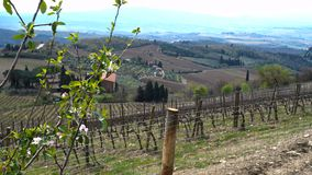 Vineyards of Toscana. View of a villa on a hill, a cypress alley and a valley with vineyards, province of Siena. Tuscany, Italy stock footage