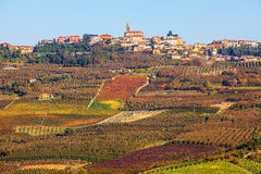Vineyards and town on the hill in Piedmont, Italy. Royalty Free Stock Photos