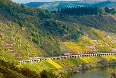 Vineyards, train and forest. Vineyards and forest along the mose riverl in germany with a train passing through Royalty Free Stock Photo