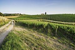 Vineyards in Tuscany. Farm house stock photos