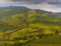 Vineyards in Tuscany, Italy Royalty Free Stock Photo