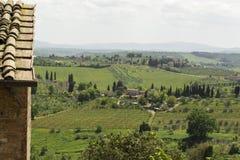 Vineyards of Tuscany stock image