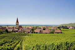 Vineyards and village royalty free stock images