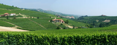 The vineyards at the village of Barolo in Piedmont Stock Photography